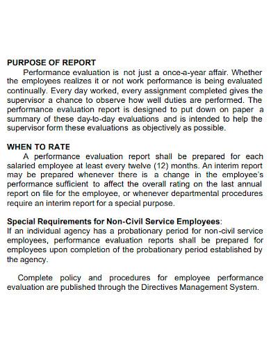 company performance evaluation report