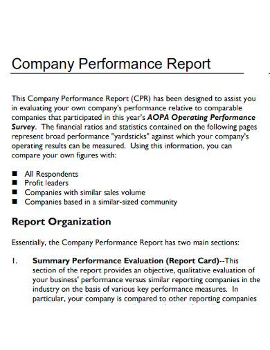 company performance report sample