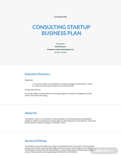 consulting startup business plan template