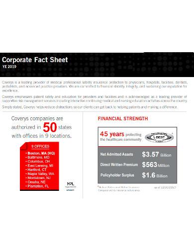 corporate financial fact sheet
