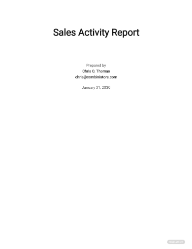 daily sales activity report template