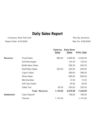 daily sales report sample