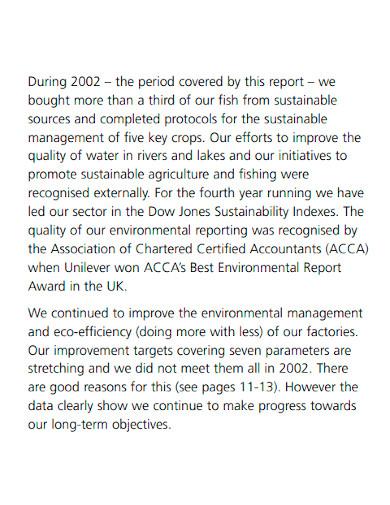 editable company performance report