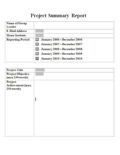 editable project summary report