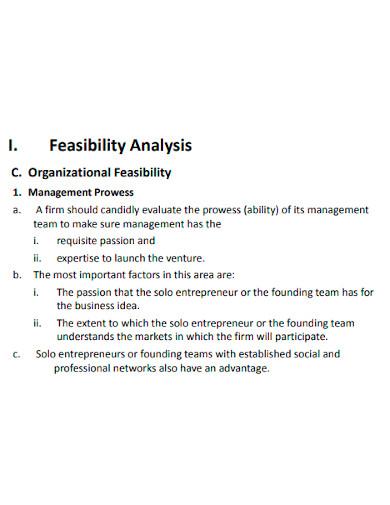 entrepreneurship feasibility analysis
