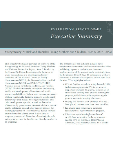 evaluation executive summary report