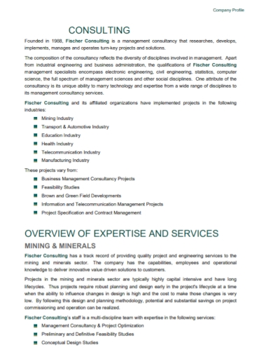 expertise consulting company profile