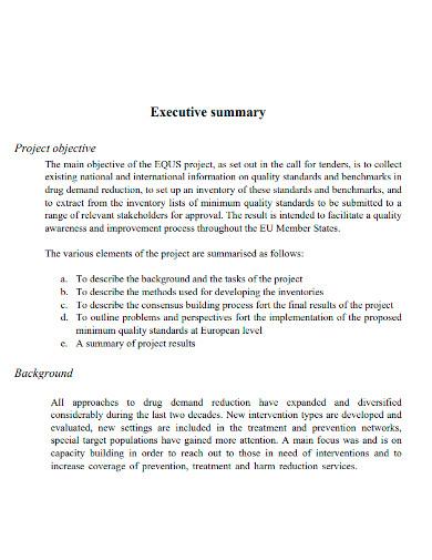 final executive summary report