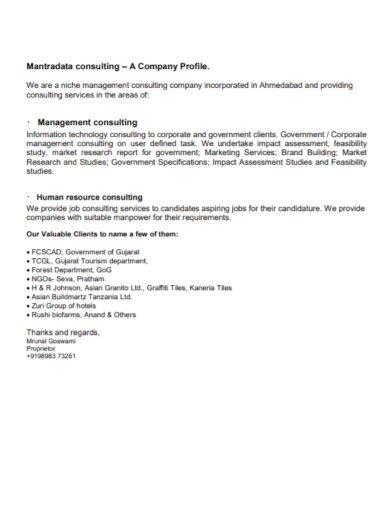 management consulting company profile