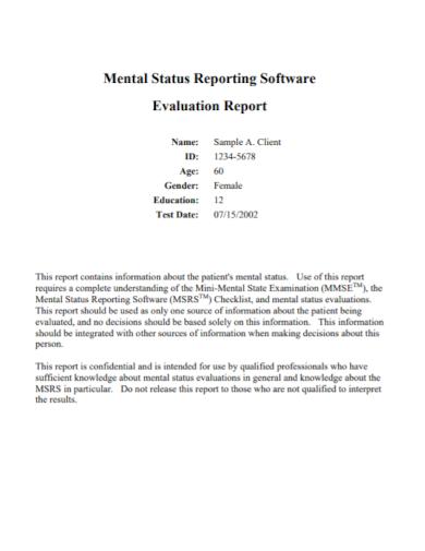 mental status software evaluation report