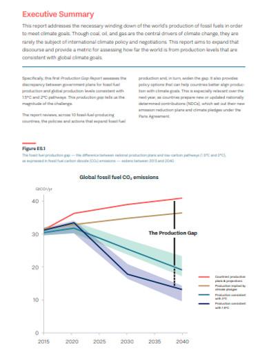 printable executive summary report
