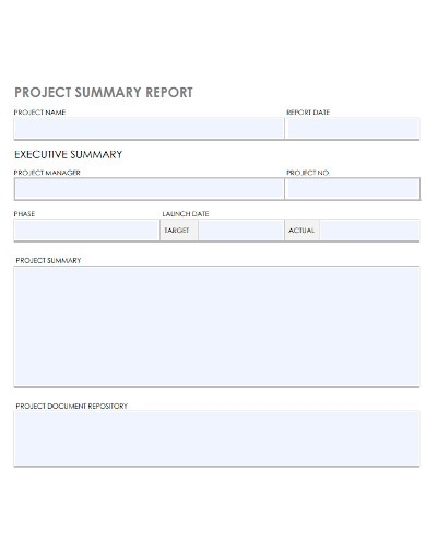 printable project summary report