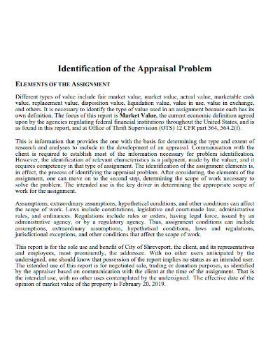 professional appraisal report