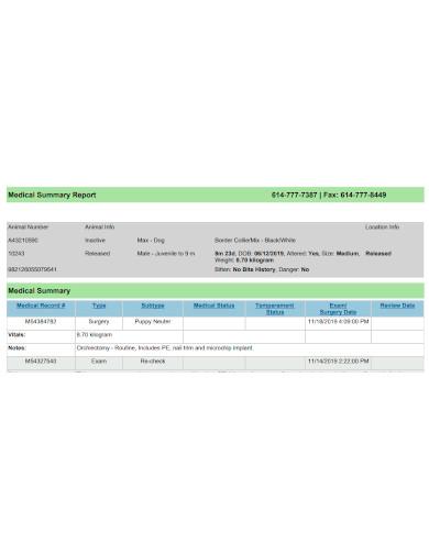 professional medical summary report