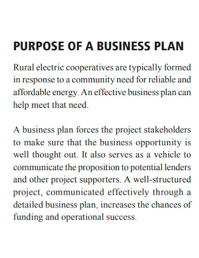 rural electric co operative business plan