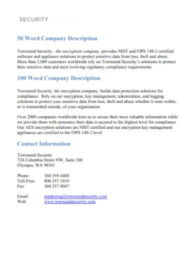 security company description