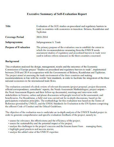 self evaluation executive summary report
