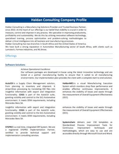 software consulting company profile