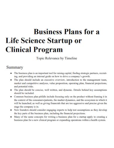startup business plan program summary