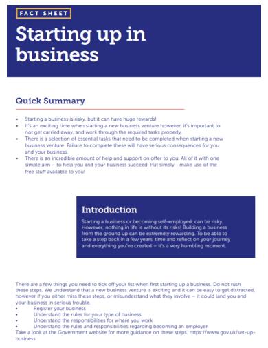 startup business summary fact sheet