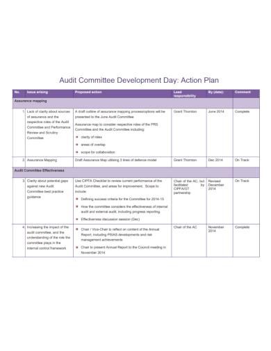 audit committee development action plan