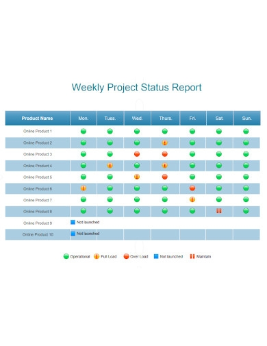 basic project weekly status report