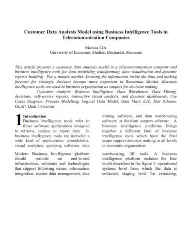 business intelligence customer data analysis