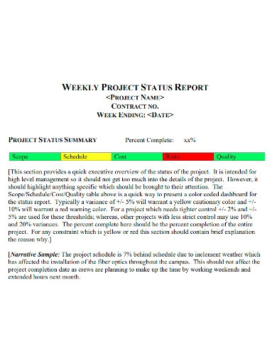 editable project weekly status report