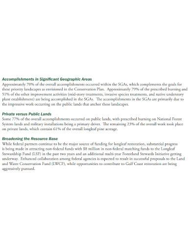 editable work accomplishment report