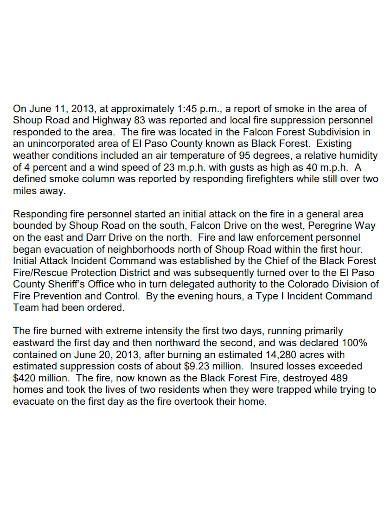 forest fire investigation report