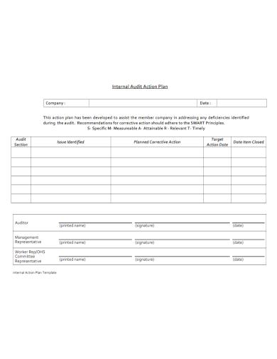 internal audit action plan