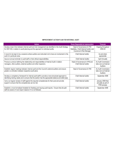 internal audit improvement action plan