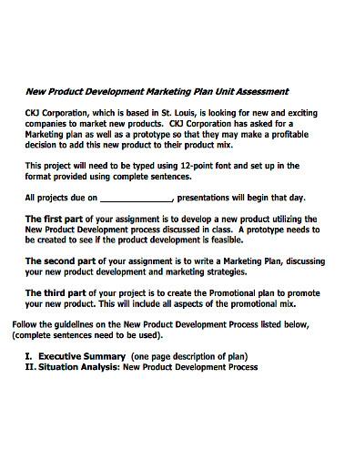 new product development marketing plan