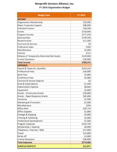non profit services organization budget