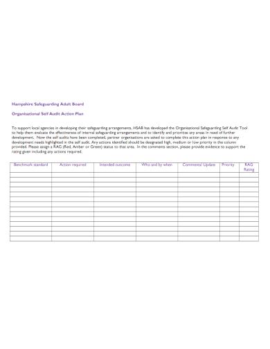 organizational self audit action plan