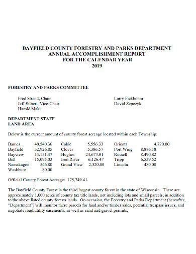 printable annual accomplishment report