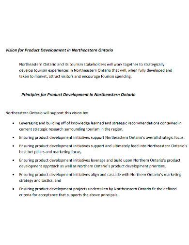 product development implementation plan