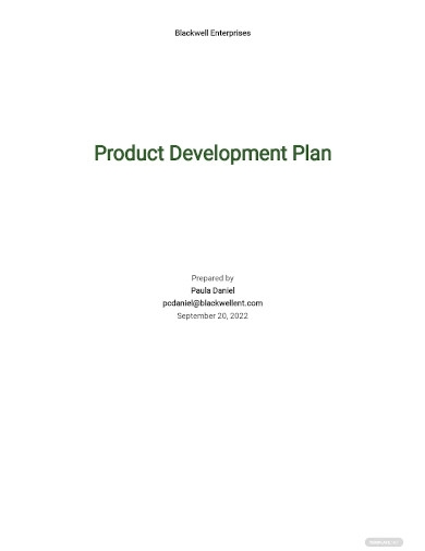 product development plan sample