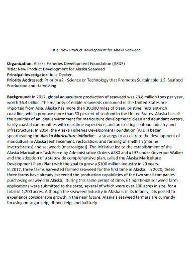 product development proposal format