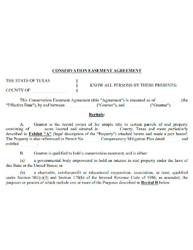 professional conservation easement agreement