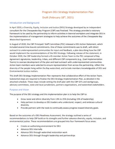 program strategy implementation plan