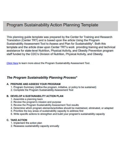 program sustainability action plan