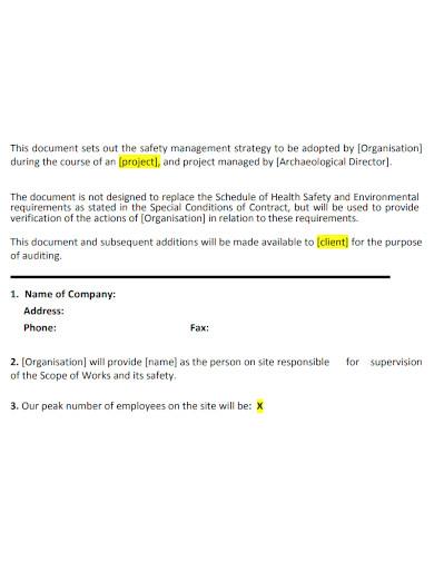 project safe work method statement