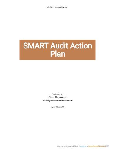 smart audit action plan template