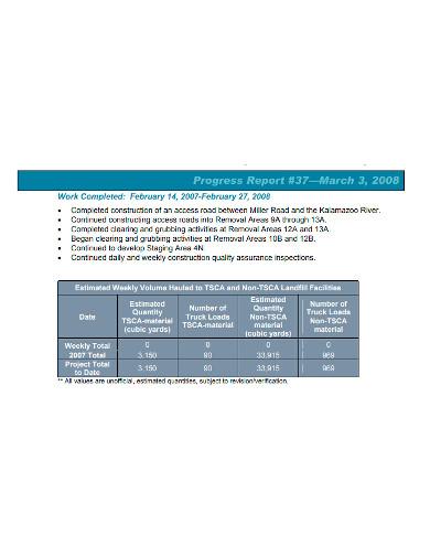 weekly construction progress report format