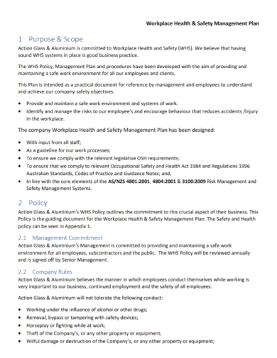 workplace health and safety management plan