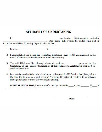 affidavit of undertaking format