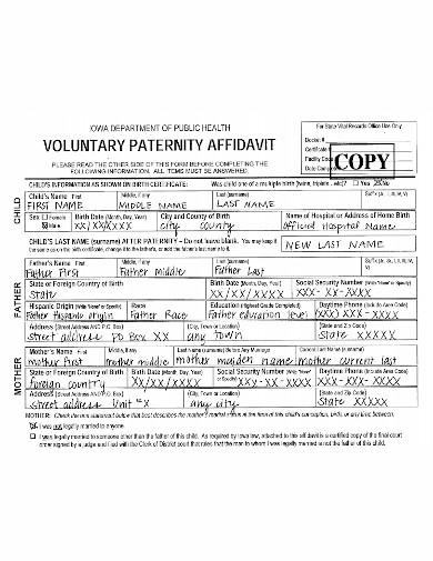 affidavit of voluntary paternity