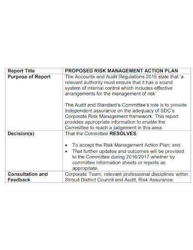 basic risk management action plan