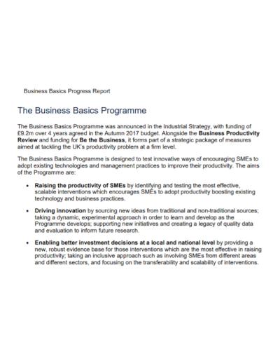 business basics programme progress report